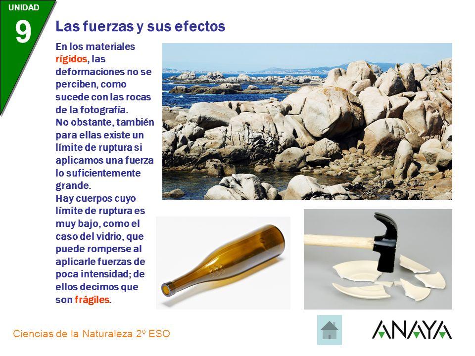 UNIDAD 9 Ciencias de la Naturaleza 2º ESO Las fuerzas y sus efectos Los materiales plásticos mantienen la deformación; es el caso, por ejemplo, de la