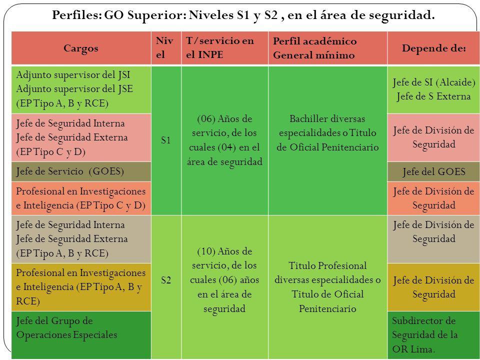 Perfiles: GO Superior: Niveles S1 y S2, en el área de seguridad. Cargos Niv el T/servicio en el INPE Perfil académico General mínimo Depende de: Adjun