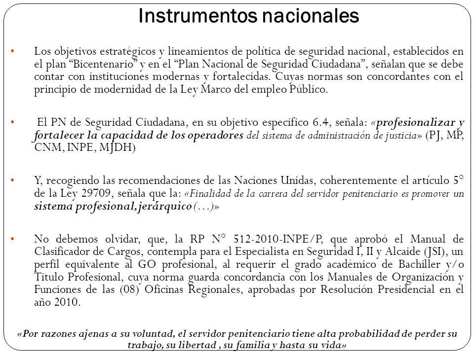 Instrumentos nacionales Los objetivos estratégicos y lineamientos de política de seguridad nacional, establecidos en el plan Bicentenario y en el Plan