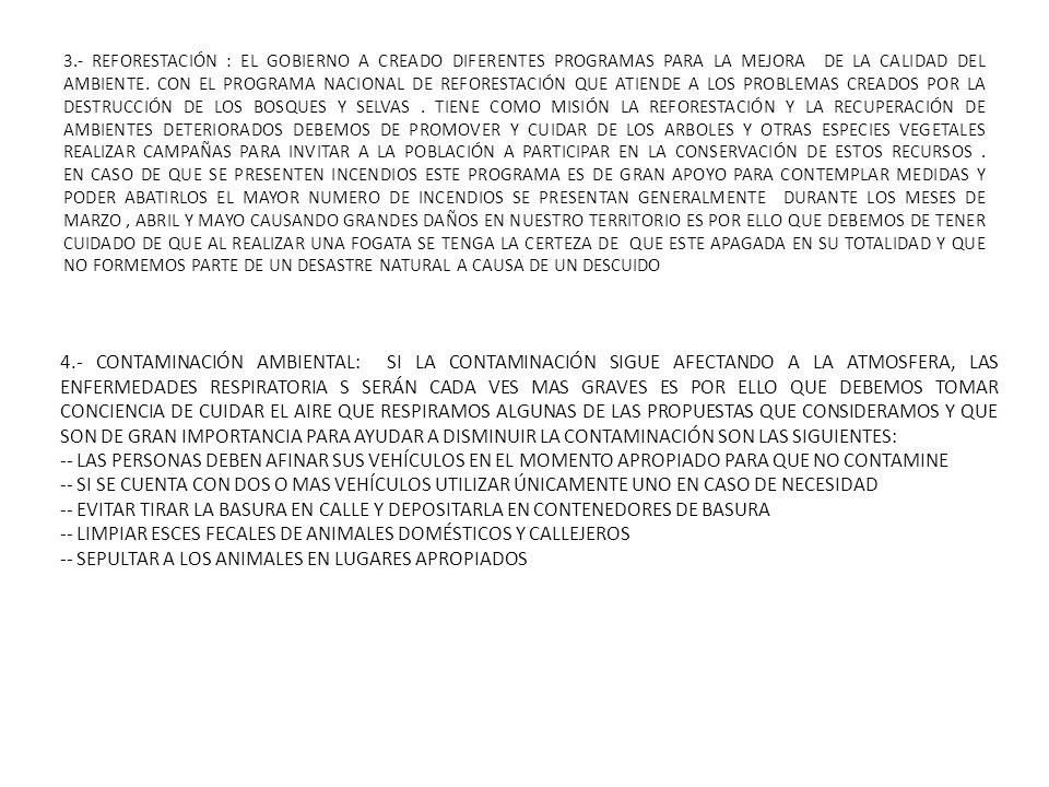3.- REFORESTACIÓN : EL GOBIERNO A CREADO DIFERENTES PROGRAMAS PARA LA MEJORA DE LA CALIDAD DEL AMBIENTE. CON EL PROGRAMA NACIONAL DE REFORESTACIÓN QUE