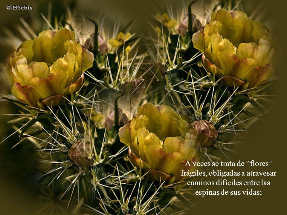 Esto nos hace esperar que en vez de ser flores solitarias, podamos alguna vez llenar con nuestras diversidades el espléndido e inmenso jardín que es el mundo, pleno de maravillosa e intercambiable humanidad.