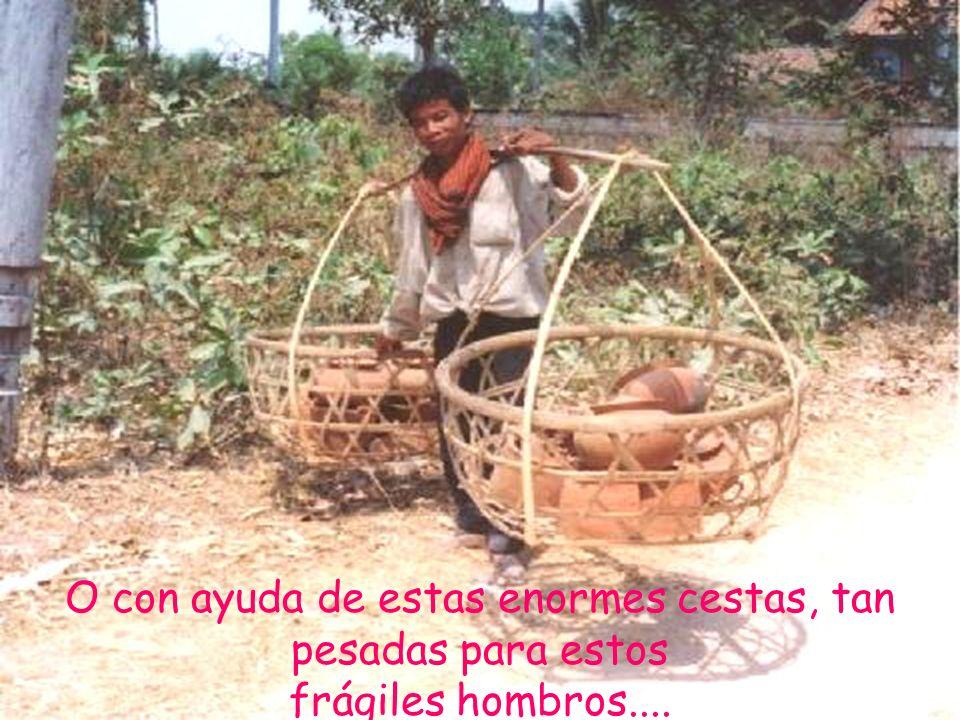 O con ayuda de estas enormes cestas, tan pesadas para estos frágiles hombros....