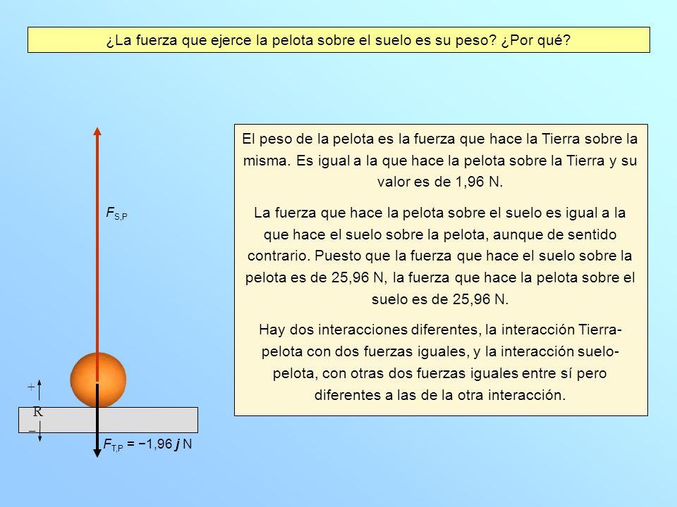 ¿La fuerza que ejerce la pelota sobre el suelo es su peso? ¿Por qué? El peso de la pelota es la fuerza que hace la Tierra sobre la misma. Es igual a l