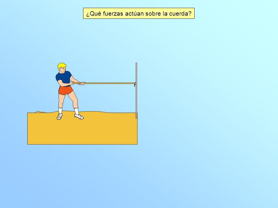 ¿Qué fuerzas actúan sobre la cuerda?