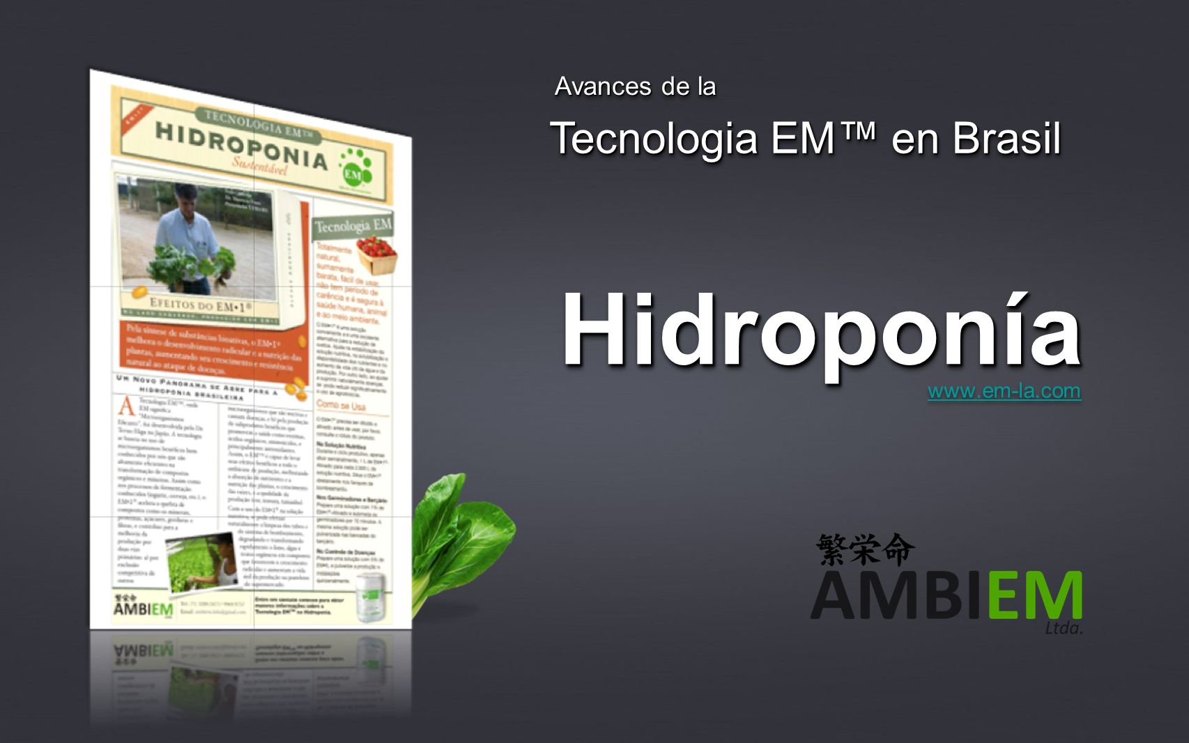 HidroponíaHidroponía www.em-la.com Avances de la Tecnologia EM en Brasil