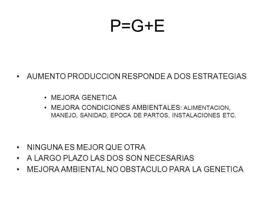 P=G+E AUMENTO PRODUCCION RESPONDE A DOS ESTRATEGIAS MEJORA GENETICA MEJORA CONDICIONES AMBIENTALES : ALIMENTACION, MANEJO, SANIDAD, EPOCA DE PARTOS, I