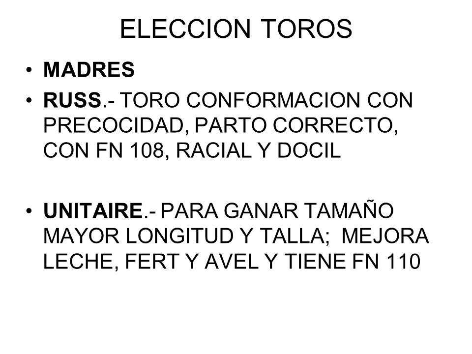 ELECCION TOROS MADRES RUSS.- TORO CONFORMACION CON PRECOCIDAD, PARTO CORRECTO, CON FN 108, RACIAL Y DOCIL UNITAIRE.- PARA GANAR TAMAÑO MAYOR LONGITUD