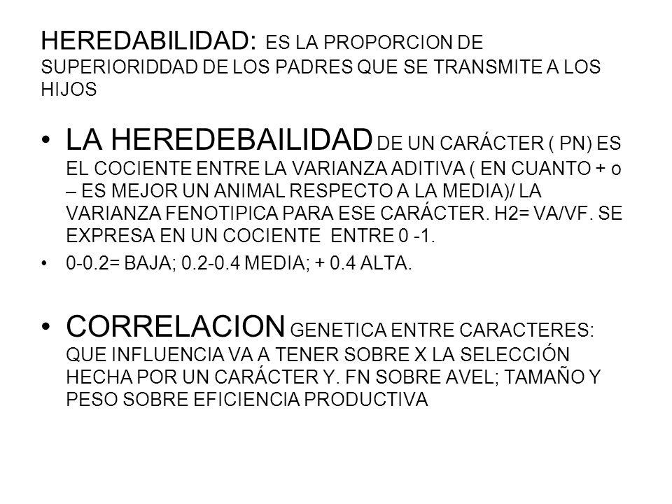 BOVINOS CARNE TRES GRUPOS DE CARACTERES LIGADOS A LA REPRODUCCION: MUY IMPORTANTE PUNTO VISTA ECONOMICO PERO HEREDABILIDAD BAJA.