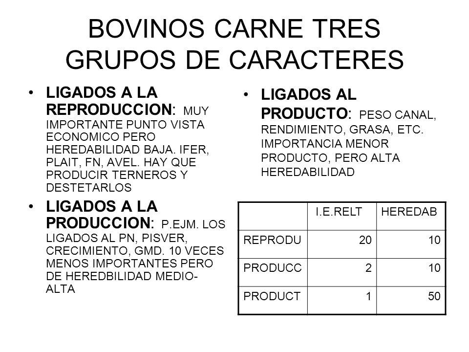 BOVINOS CARNE TRES GRUPOS DE CARACTERES LIGADOS A LA REPRODUCCION: MUY IMPORTANTE PUNTO VISTA ECONOMICO PERO HEREDABILIDAD BAJA. IFER, PLAIT, FN, AVEL