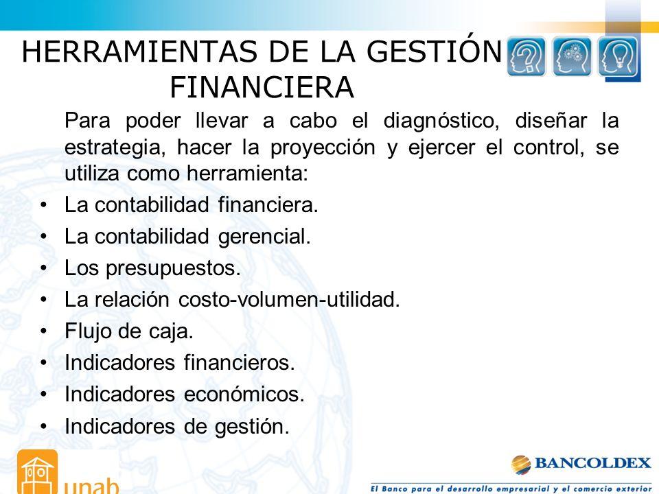 HERRAMIENTAS DE LA GESTIÓN FINANCIERA Para poder llevar a cabo el diagnóstico, diseñar la estrategia, hacer la proyección y ejercer el control, se uti