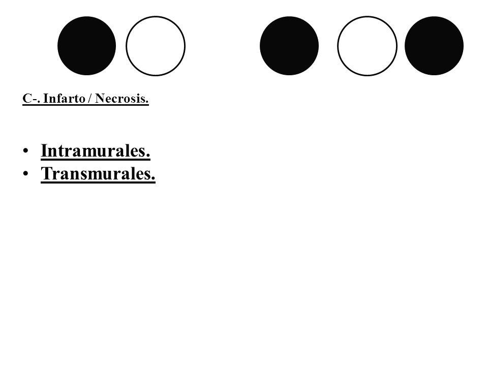 C-. Infarto / Necrosis. Intramurales. Transmurales.