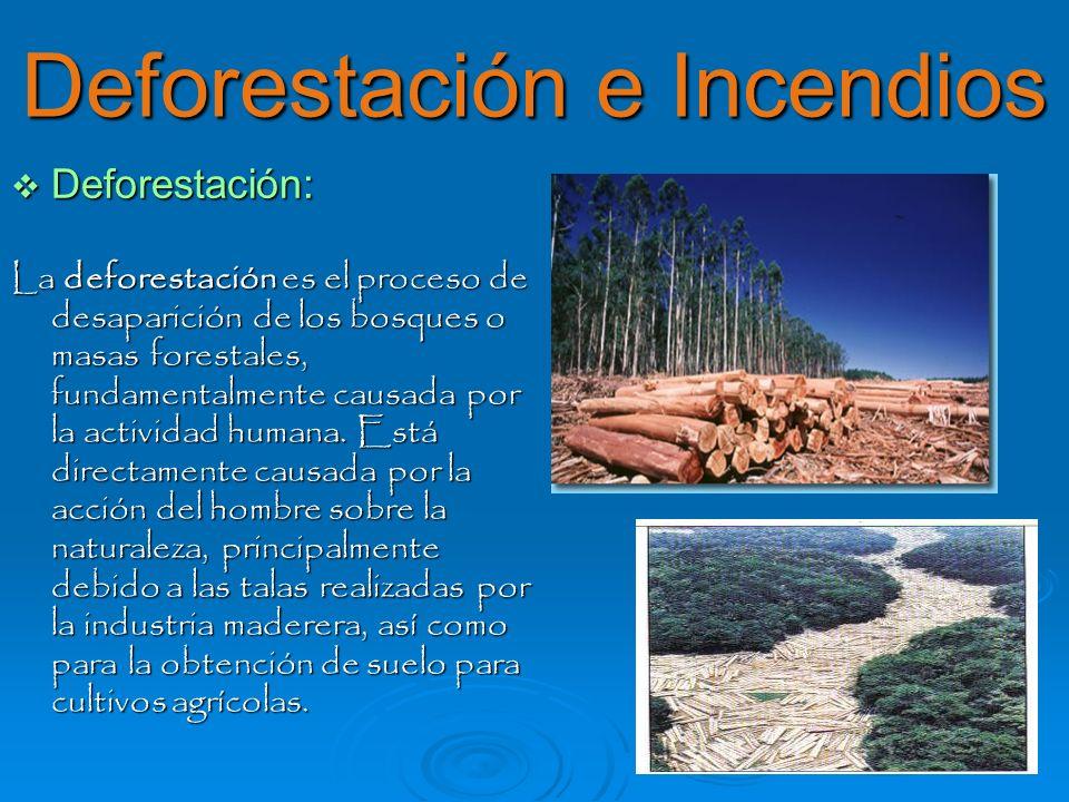 Deforestación e Incendios Deforestación: Deforestación: La deforestación es el proceso de desaparición de los bosques o masas forestales, fundamentalm