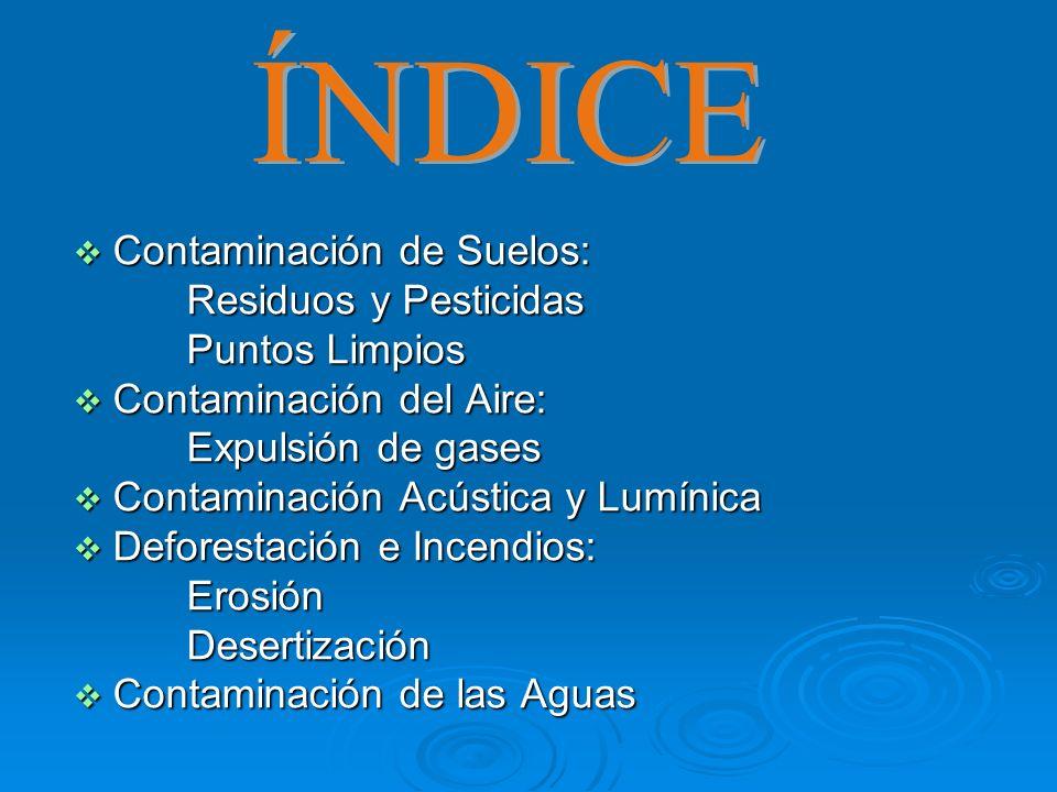 Contaminación de Suelos: Contaminación de Suelos: Residuos y Pesticidas Residuos y Pesticidas Puntos Limpios Puntos Limpios Contaminación del Aire: Co