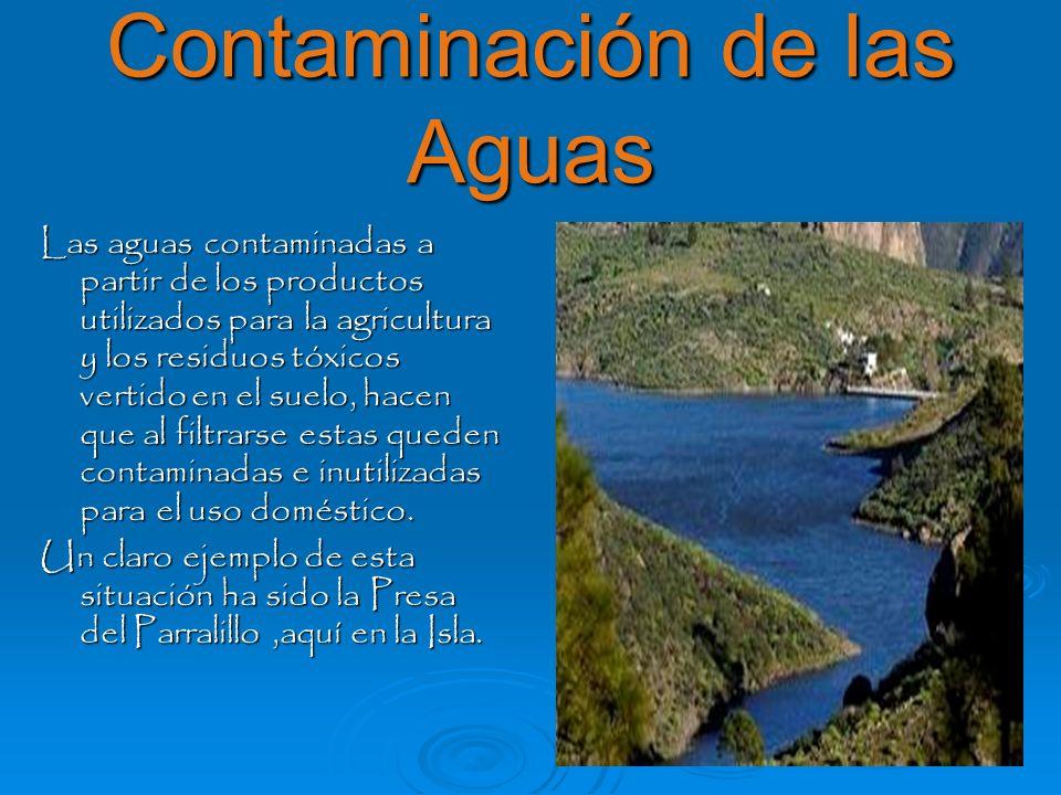 Contaminación de las Aguas Las aguas contaminadas a partir de los productos utilizados para la agricultura y los residuos tóxicos vertido en el suelo,
