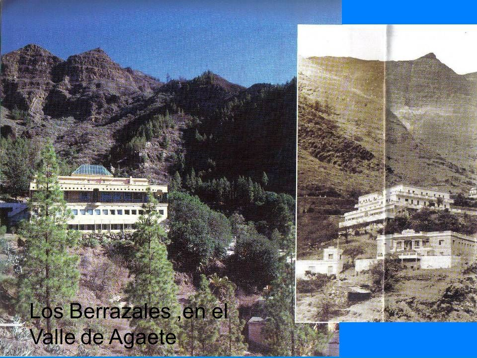 Los Berrazales,en el Valle de Agaete