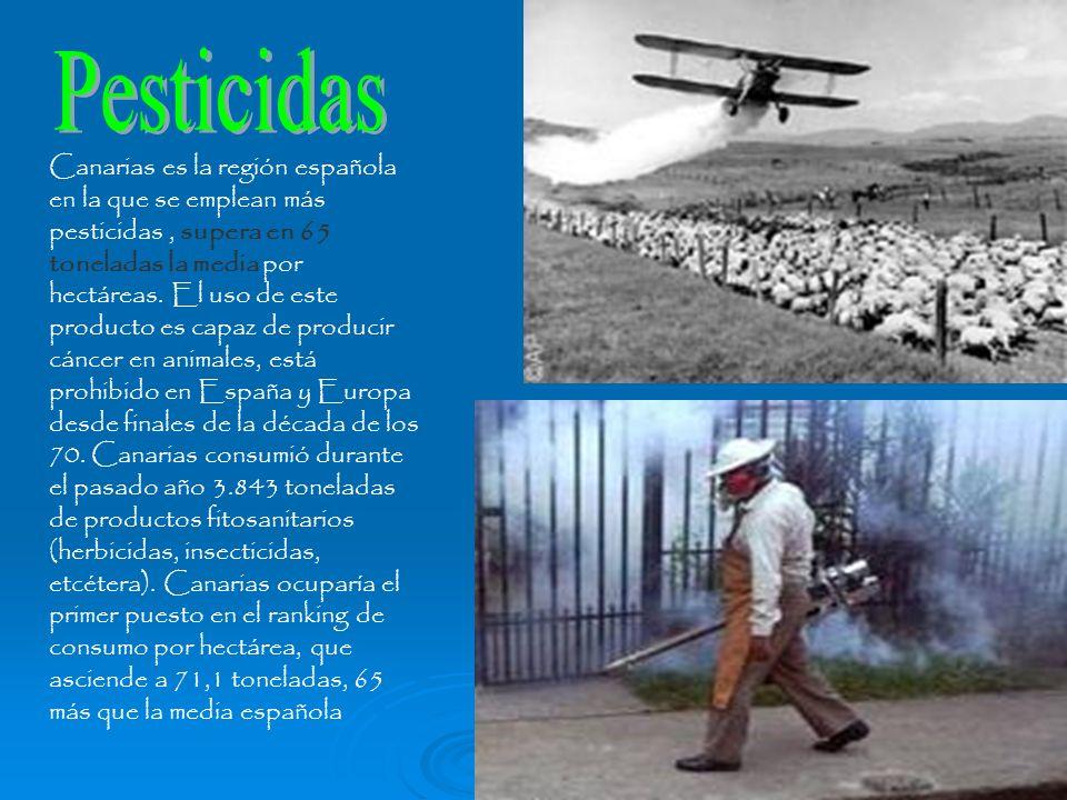 Canarias es la región española en la que se emplean más pesticidas, supera en 65 toneladas la media por hectáreas. El uso de este producto es capaz de