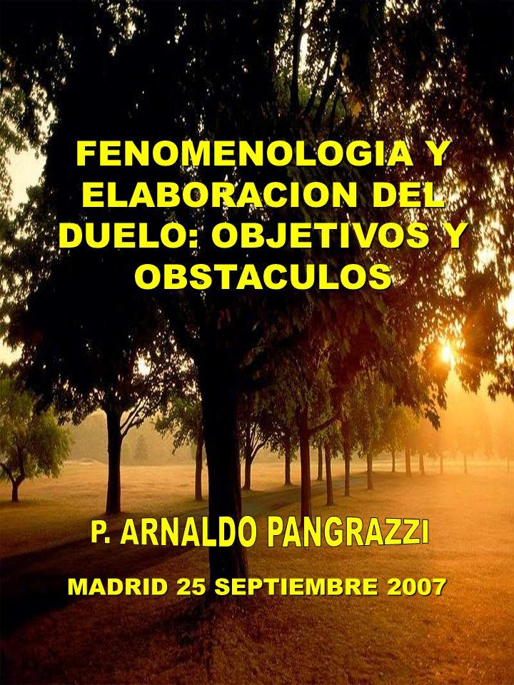 FENOMENOLOGIA Y ELABORACION DEL DUELO: OBJETIVOS Y OBSTACULOS MADRID 25 SEPTIEMBRE 2007