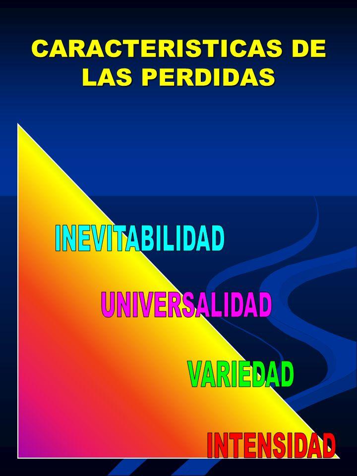 CARACTERISTICAS DE LAS PERDIDAS