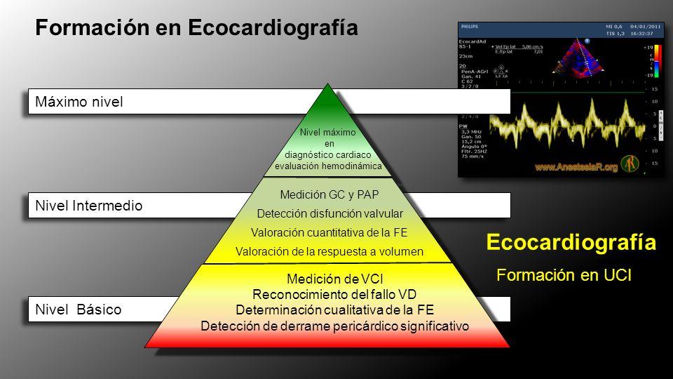 Formación en Ecocardiografía Máximo nivel Nivel máximo en diagnóstico cardiaco evaluación hemodinámica Nivel Intermedio Medición GC y PAP Detección disfunción valvular Valoración cuantitativa de la FE Valoración de la respuesta a volumen Nivel Básico Medición de VCI Reconocimiento del fallo VD Determinación cualitativa de la FE Detección de derrame pericárdico significativo Ecocardiografía Formación en UCI