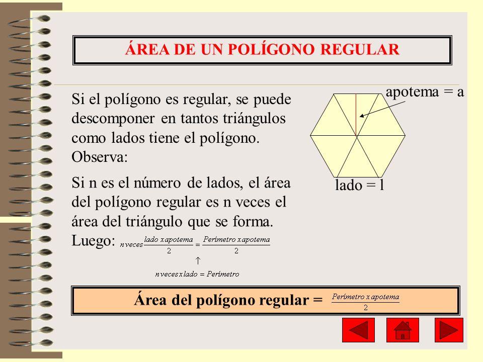 ÁREA DE UN POLÍGONO REGULAR Si el polígono es regular, se puede descomponer en tantos triángulos como lados tiene el polígono. Observa: lado = l apote