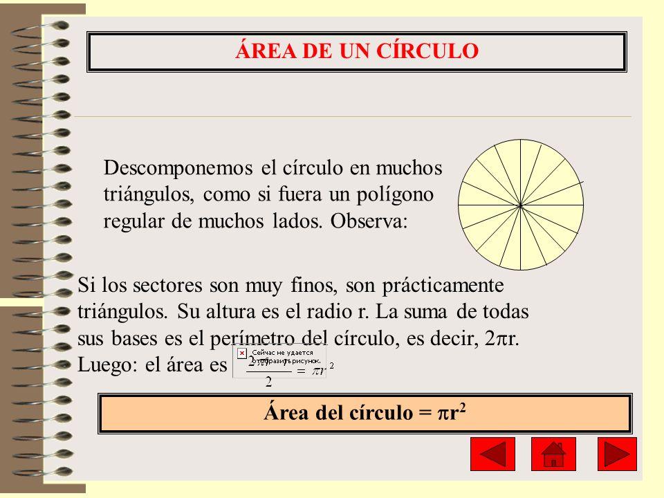 ÁREA DE UN CÍRCULO Descomponemos el círculo en muchos triángulos, como si fuera un polígono regular de muchos lados. Observa: Si los sectores son muy