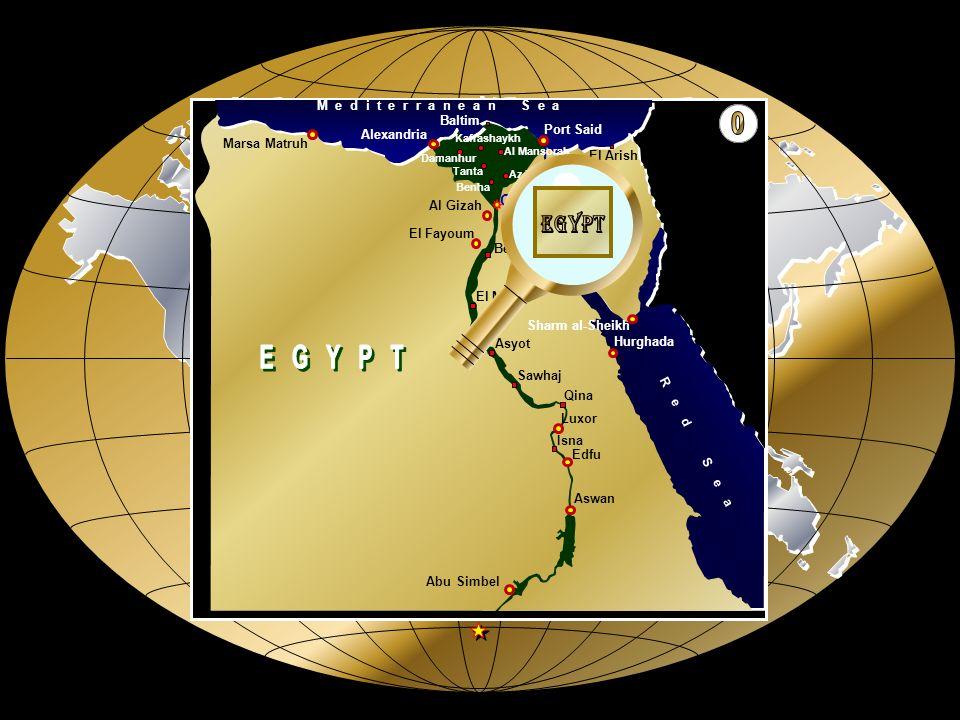 A S W A N A L E X A N D R I A P O R T S A I D H U R G H A D A L U X O R S H A R M A L - S H E I K H F A Y O U M EGIPTO AVANCE AUTOMATICO
