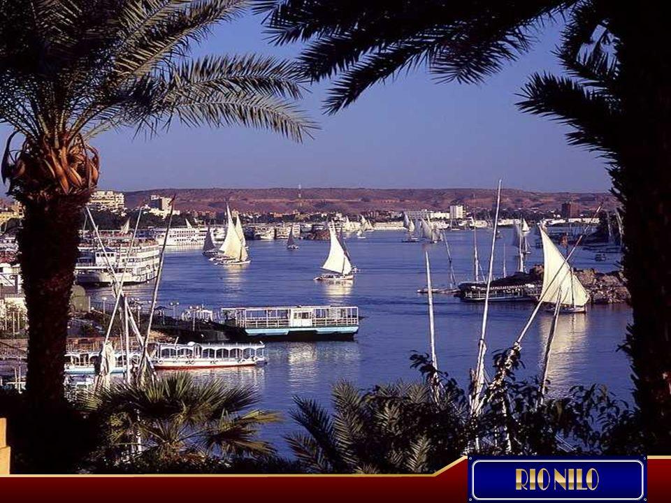 El Nilo, el río más largo del mundo nace en el Lago Victoria, atraviesa las montañas africanas, las selvas tropicales y el desierto.