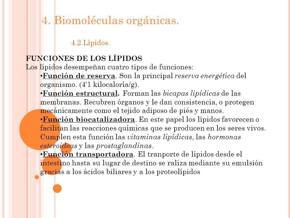 4.Biomoléculas orgánicas. 4.2 Lípidos.