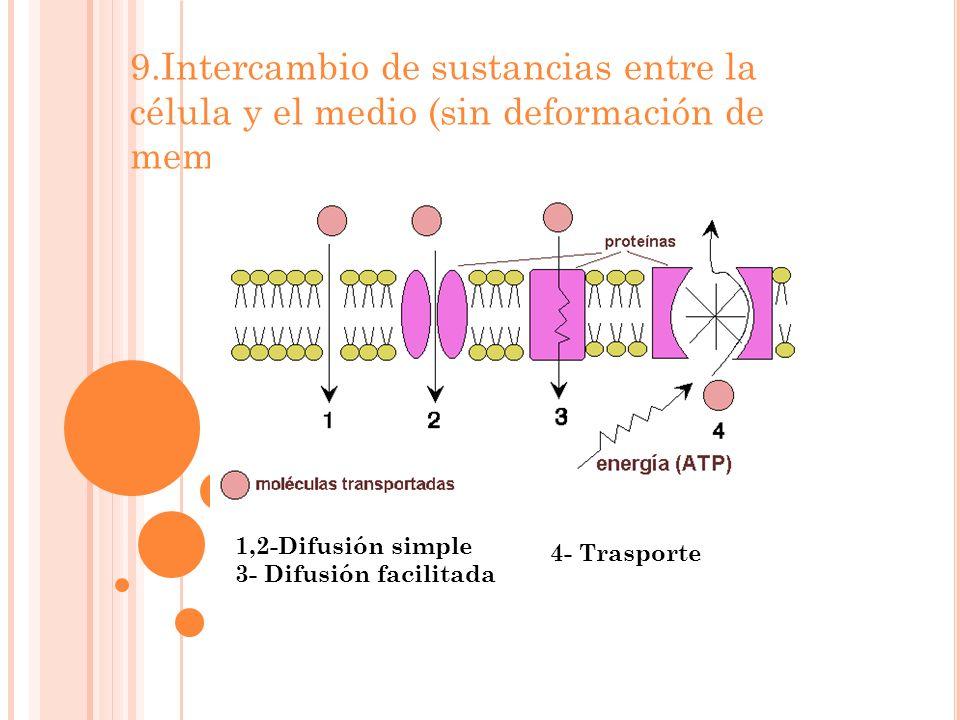 9.Intercambio de sustancias entre la célula y el medio (sin deformación de memb) 1,2-Difusión simple 3- Difusión facilitada 4- Trasporte