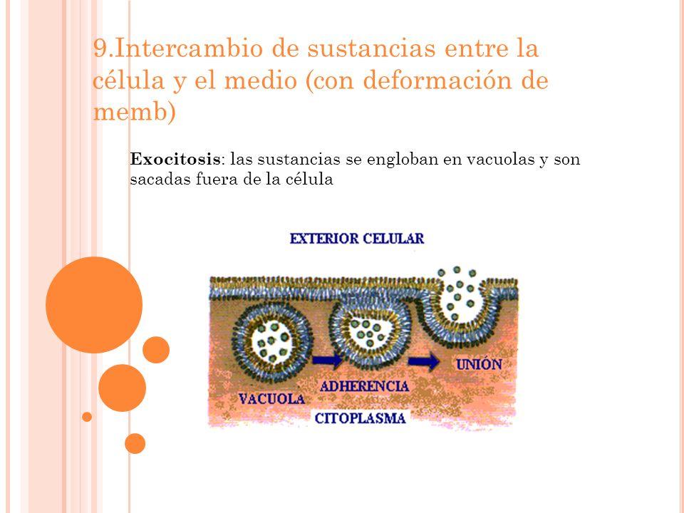 9.Intercambio de sustancias entre la célula y el medio (con deformación de memb) Exocitosis : las sustancias se engloban en vacuolas y son sacadas fuera de la célula