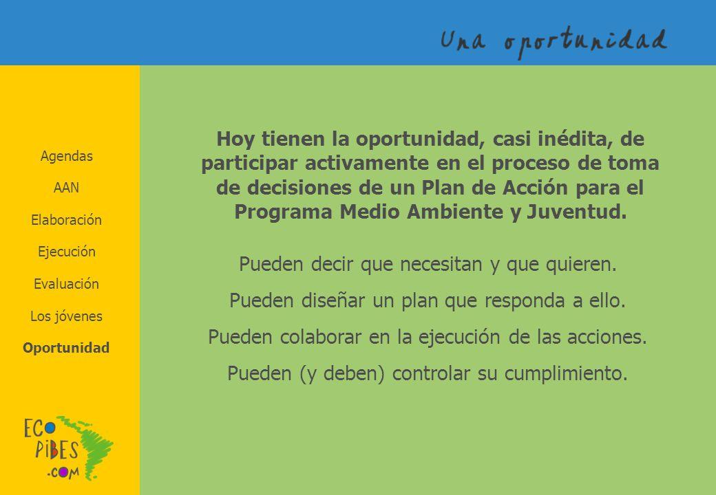Agendas AAN Elaboración Los jóvenes Evaluación Ejecución Oportunidad Hoy tienen la oportunidad, casi inédita, de participar activamente en el proceso