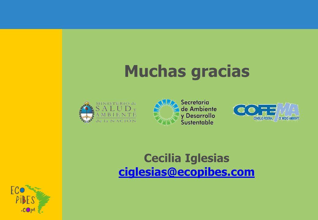 Muchas gracias Cecilia Iglesias ciglesias@ecopibes.com