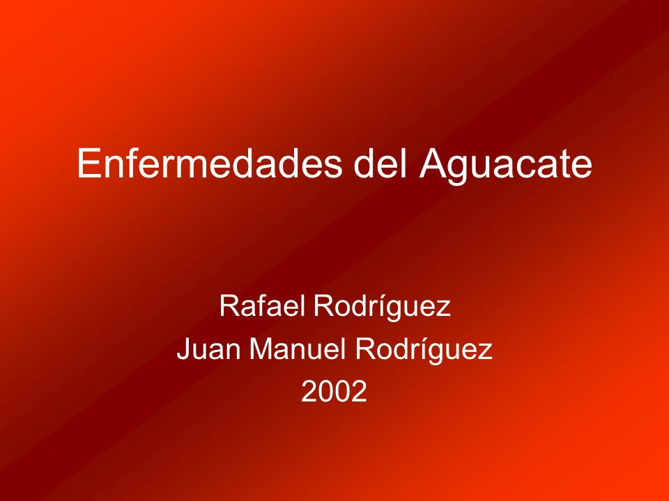 Enfermedades del Aguacate Rafael Rodríguez Juan Manuel Rodríguez 2002