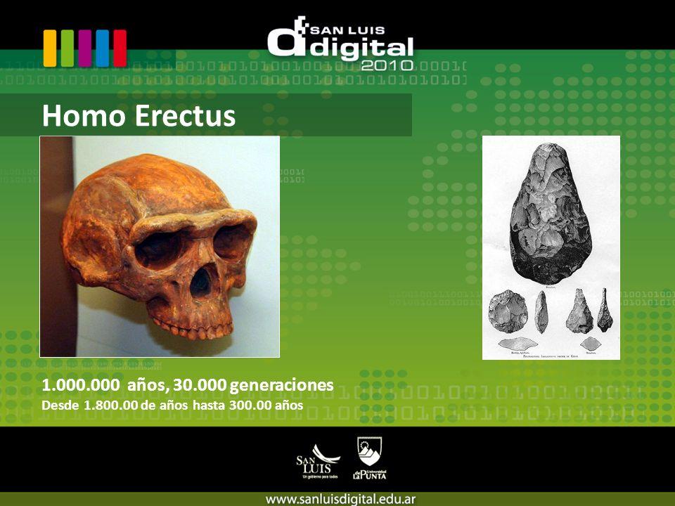 1.000.000 años, 30.000 generaciones Desde 1.800.00 de años hasta 300.00 años Homo Erectus