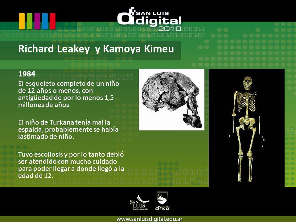 1984 El esqueleto completo de un niño de 12 años o menos, con antigüedad de por lo menos 1,5 millones de años El niño de Turkana tenía mal la espalda, probablemente se había lastimado de niño.
