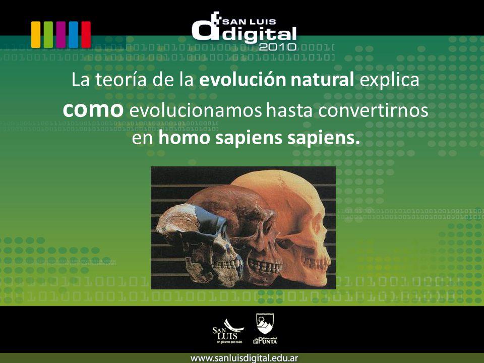 La teoría de la evolución natural explica como evolucionamos hasta convertirnos en homo sapiens sapiens.