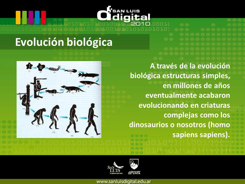 A través de la evolución biológica estructuras simples, en millones de años eventualmente acabaron evolucionando en criaturas complejas como los dinosaurios o nosotros (homo sapiens sapiens).