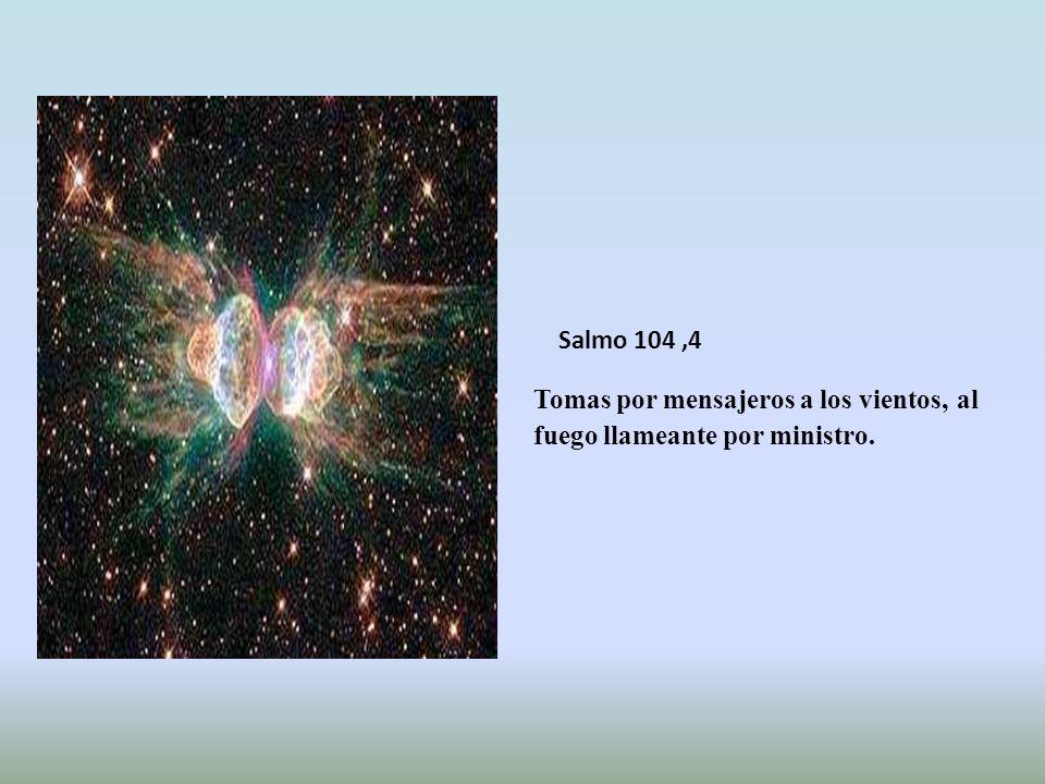El maná lloverá en otro lugar ; (Sabiduria16,20) A tu pueblo, por contrario, le alimentaste con manjar de ángeles; les suministraste, sin cesar, desde