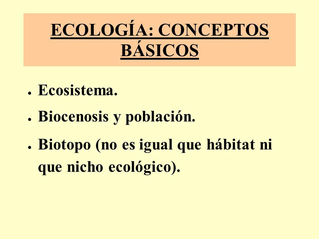 ECOLOGÍA: CONCEPTOS BÁSICOS Ecosistema.Biocenosis y población.