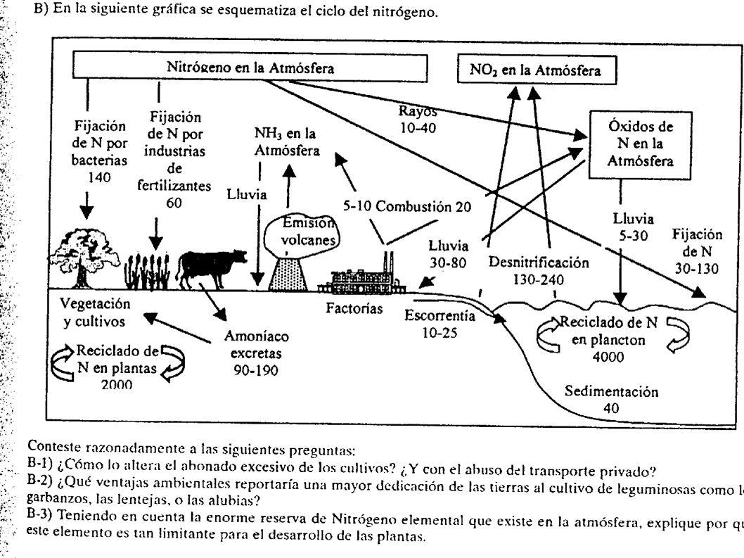 PÉRDIDA DE NUTRIENTES Ecosistemas terrestres: – Lixiviado.