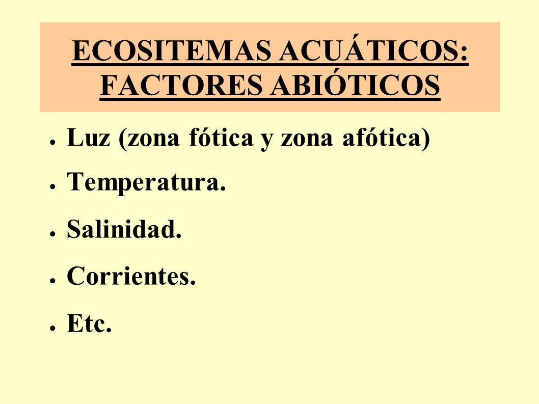 ECOSITEMAS ACUÁTICOS: FACTORES ABIÓTICOS Luz (zona fótica y zona afótica) Temperatura.