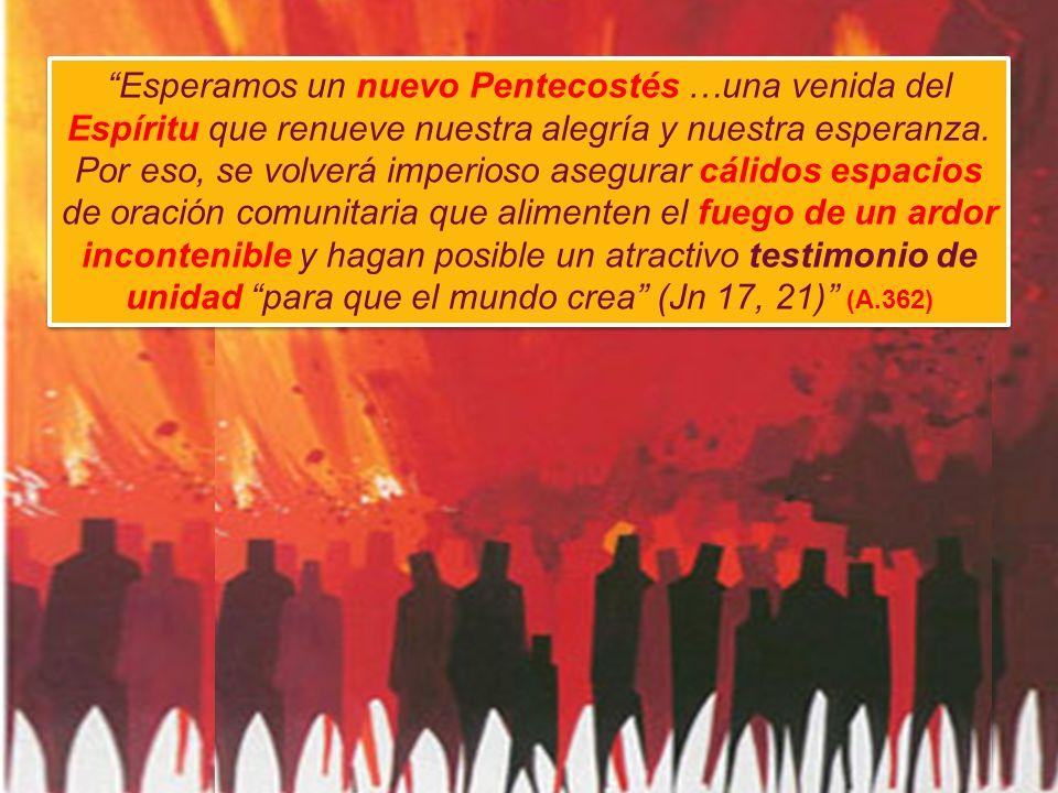 Esperamos un nuevo Pentecostés …una venida del Espíritu que renueve nuestra alegría y nuestra esperanza.