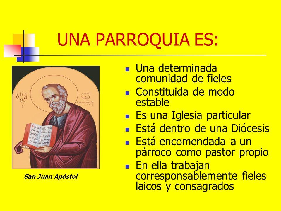 UNA PARROQUIA ES: Una determinada comunidad de fieles Constituida de modo estable Es una Iglesia particular Está dentro de una Diócesis Está encomenda
