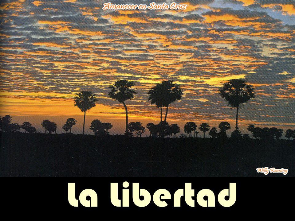 PRESENTACION DE SLIDES PRENDE LOS PARLANTES.. Click p/cambiar slide La Libertad