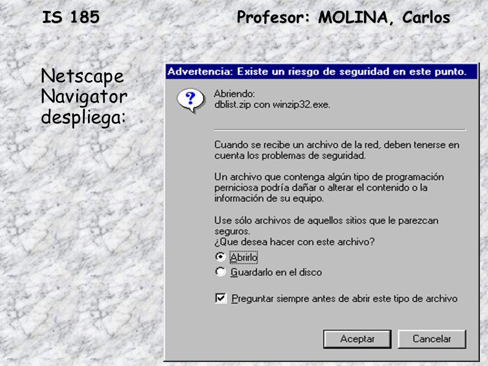 IS 185Profesor: MOLINA, Carlos Netscape Navigator despliega: