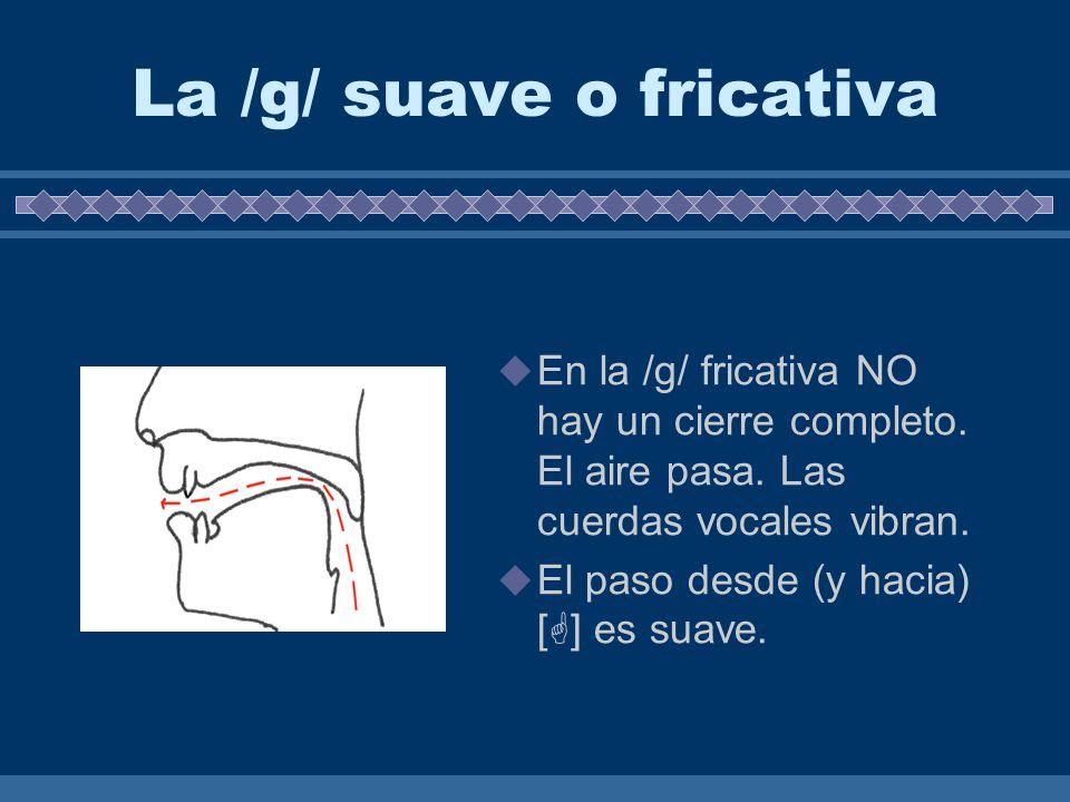 La /g/ fuerte u oclusiva En la /g/ oclusiva hay un cierre completo. El aire no pasa. Las cuerdas vocales vibran. El paso desde (y hacia) [g] es abrubt