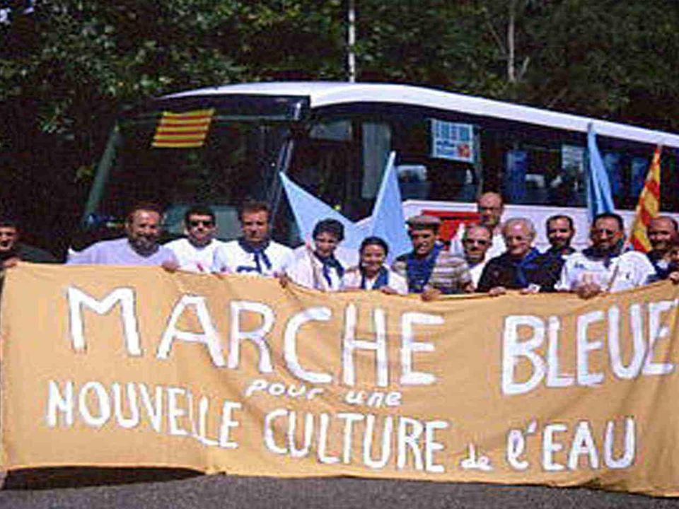 Marcha azul 2001