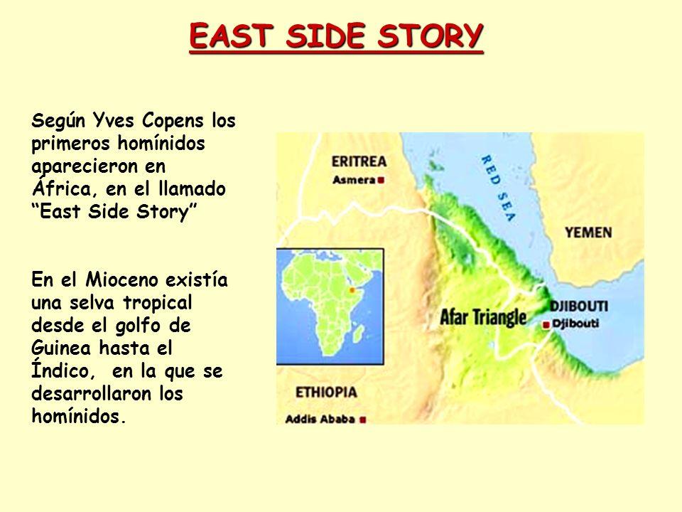 EAST SIDE STORY Según Yves Copens los primeros homínidos aparecieron en África, en el llamado East Side Story En el Mioceno existía una selva tropical
