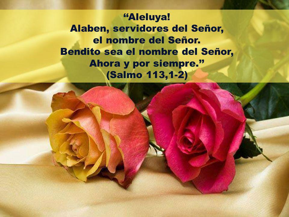Aleluya! Alaben, servidores del Señor, el nombre del Señor. Bendito sea el nombre del Señor, Ahora y por siempre. (Salmo 113,1-2)