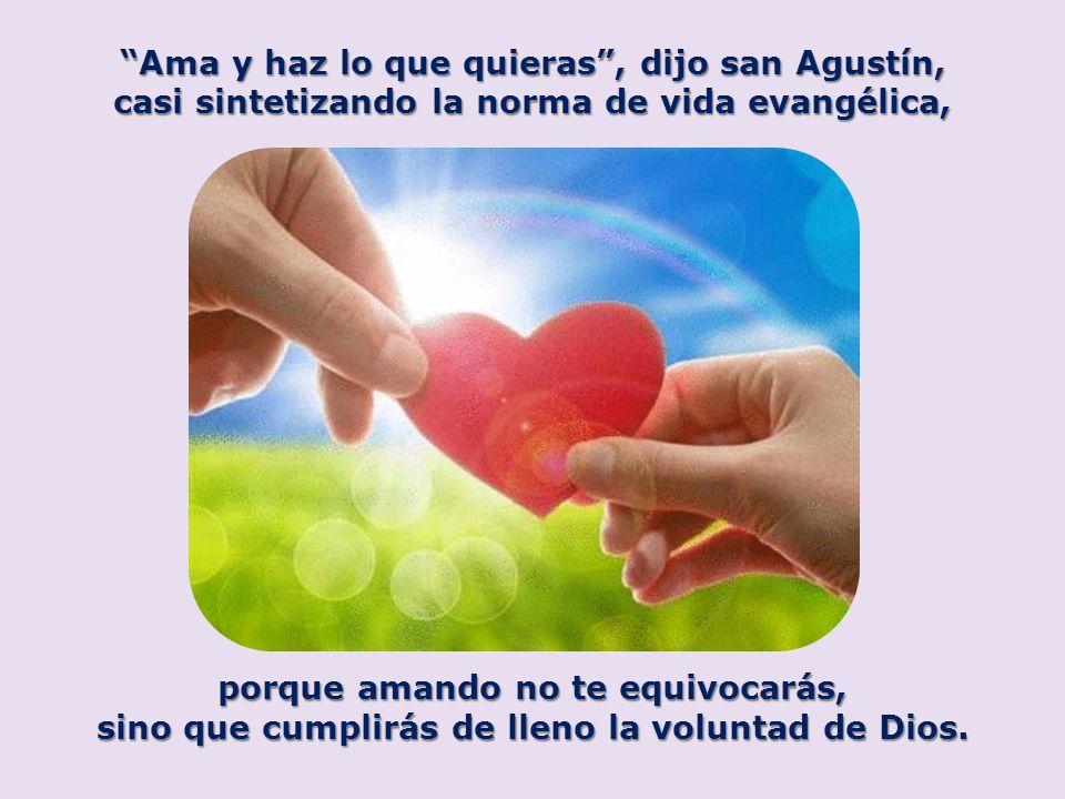 Ama y haz lo que quieras, dijo san Agustín, casi sintetizando la norma de vida evangélica, porque amando no te equivocarás, sino que cumplirás de llen
